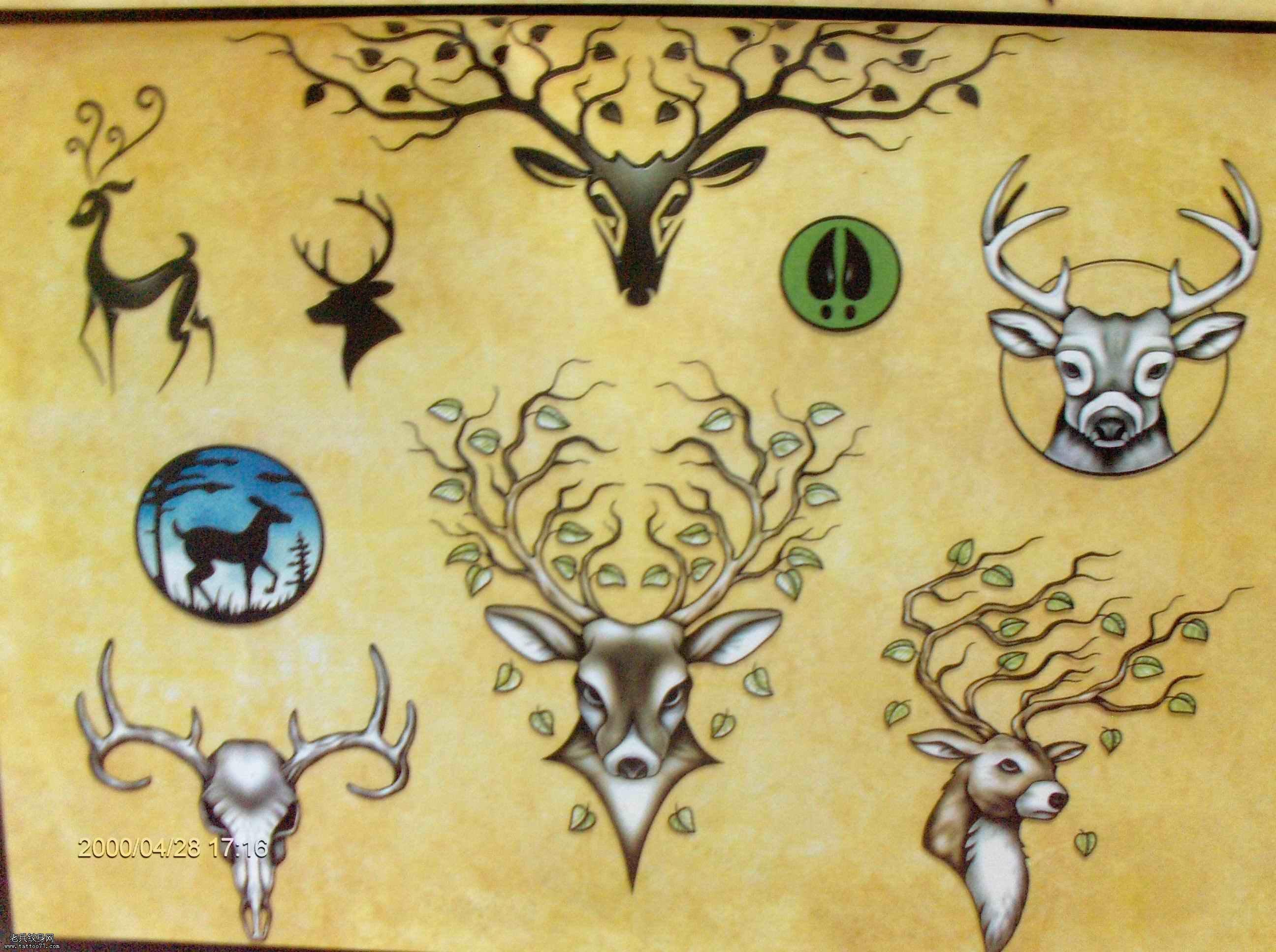 鹿纹身_鹿纹身图案大全_鹿纹身手稿_鹿纹身图片 - 858图片