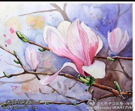 水彩风纯洁高雅的玉兰花纹身图案