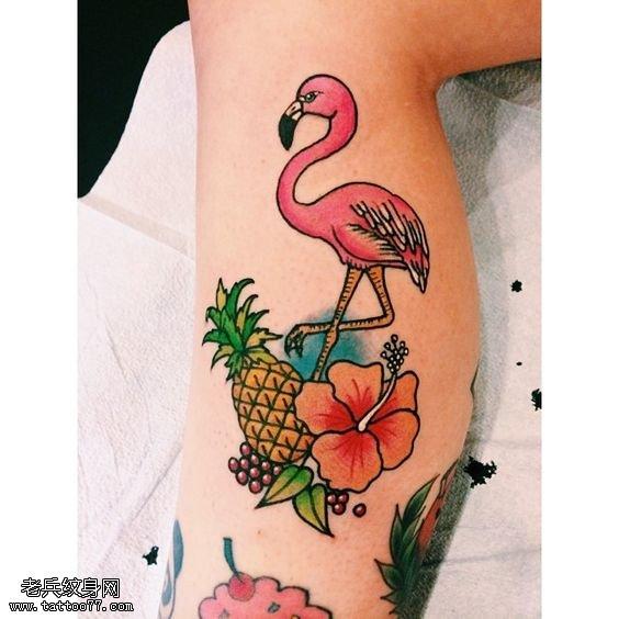 小腿的热带水果火烈鸟纹身图案