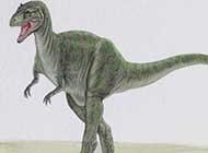 精美手绘恐龙唯美图片