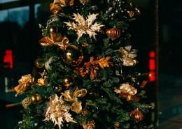 裝飾精美的圣誕樹圖片_16張