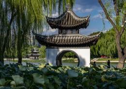 北京陶然亭公园风景图片_9张