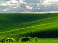 美丽的草原景色高清摄影图片