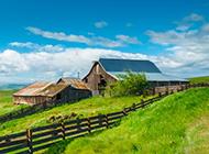 草原绿色风景壁纸清新怡人