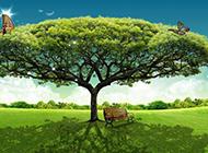 绿色茂盛的大树高清图片