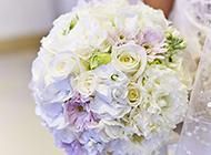 婚禮上的一束白玫瑰高清圖片