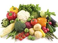 綠色植物圖片大全 健康的有機蔬菜