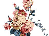 水墨素描玫瑰花插画图片