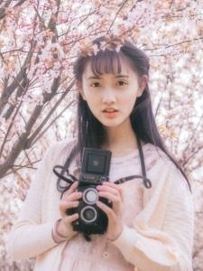 热爱摄影的漂亮少女花海中粉嫩动人