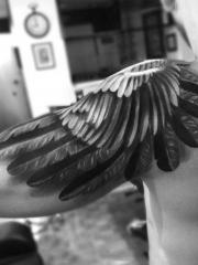 翱翔天际,披肩逼真翅膀纹身图案
