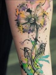 女性身上多種風格的蒲公英紋身動物圖案紋身