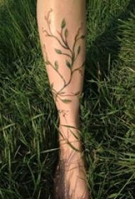多款关于弯弯的黑色抽象线条植物藤纹身图案