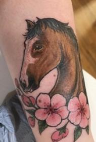 男生小腿上彩绘渐变简单线条植物花朵和马纹身图片