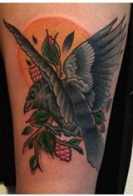乌鸦纹身图 女生小腿上植物和乌鸦纹身图片