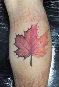 枫叶纹身图片 男生小腿上枫叶纹身图片