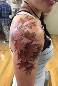 枫叶纹身图 女生手臂上枫叶纹身图片