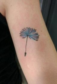 蒲公英紋身 女生手臂上彩色的蒲公英紋身圖片