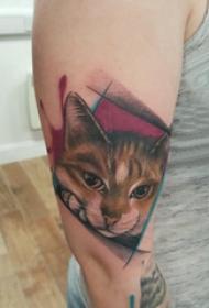 大臂纹身图 女生大臂上几何和猫咪纹身图片