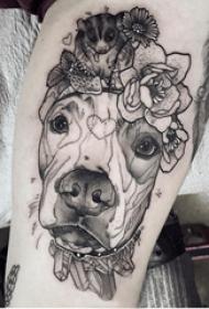 欧美小腿纹身 男生小腿上植物和小狗纹身图片