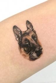 小狗纹身图片  女生小臂上可爱的小狗纹身图片