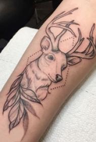 麋鹿纹身图片 女生手臂上植物和麋鹿纹身图片