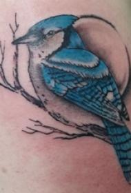 紋身鳥  男生手臂上鳥和樹枝紋身圖片