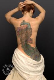 孔雀紋身圖片   色彩絢麗的孔雀紋身圖案