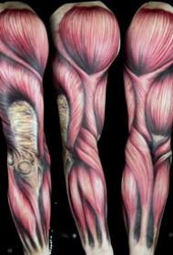 3d肌肉纹身--一组逼真效果的3d肌肉和心脏骨骼等纹身图案
