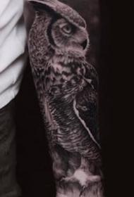 猫头鹰相关的一组9张黑灰猫头鹰纹身图案图片