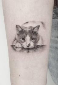 貓咪紋身--貓奴的可愛小貓咪紋身圖案作品