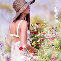 女孩和花的故事