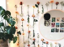 照片墻和綠植花束的絕妙組合搭配效果圖
