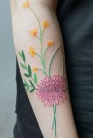 花卉植物的一组印花线条纹身手稿图案欣赏