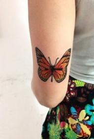 女孩子獨愛的15張蝴蝶紋身作品圖片