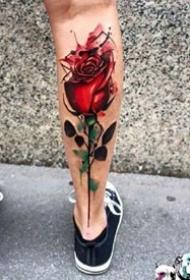 小腿玫瑰花纹身:9张小腿上漂亮的一组玫瑰花纹身图案