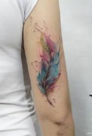 一組羽毛題材的水彩羽毛紋身圖案9張