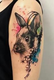 school风格的一组彩色狗狗纹身图案9张