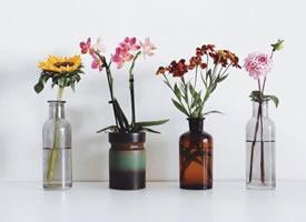简约花瓶,搭配出美美的画面感