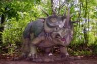 恐龙模型和恐龙化石图片_12张