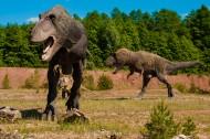 白垩纪时期的恐龙图片_15张