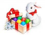 卡通兔子图片_9张