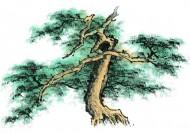 水墨松树图片_69张