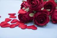 紅色的玫瑰花瓣圖片_10張