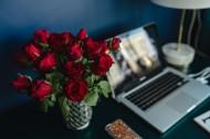 桌上的紅玫瑰圖片_10張