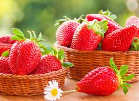 演绎莓丽、鲜嫩欲滴、香甜诱人的草