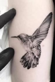 一组蜂鸟主题的纹身图案作品