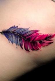 羽毛紋身圖   10款輕柔而又唯美的羽毛紋身圖案