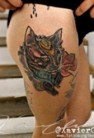 小貓紋身圖案 多款動物可愛的小貓紋身圖案10組
