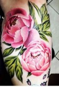 彩色花朵紋身 唯美妖艷的彩色花卉包臂紋身圖案