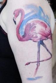 小鸟纹身图案 10组不同种类的鸟主题纹身图案欣赏
